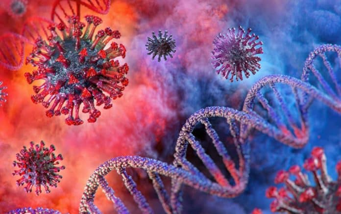 3 Things You Need to Know About the Coronavirus
