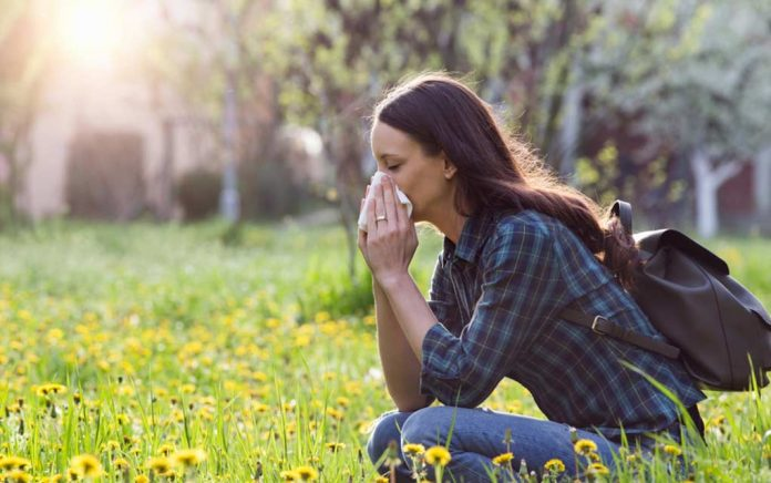 6 Tricks to Treat Seasonal Allergies